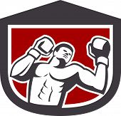Boxer Punching Boxing Shield Retro