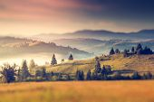 Fantastic sunny hills under morning sky. Dramatic scenery. Carpathian, Ukraine, Europe. Beauty world. Retro filtered. Tilt-shift effect.