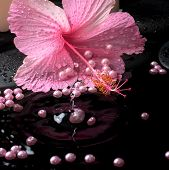Beautiful Spa Setting Of Pink Hibiscus, Candles, Zen Stones With Drops And Pearl Beads On Ripple Ref