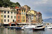 pic of genova  - Portofino village near Rapallo Genova Ligurian Coast Italy - JPG