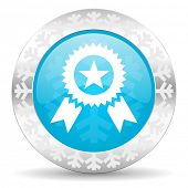 award icon, christmas button, prize sign