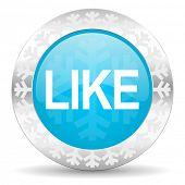 like icon, christmas button