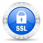 ssl blue icon, christmas button