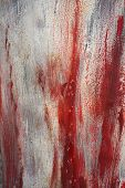 Brush strokes texture. Red paint  on a wall. Abstract background.