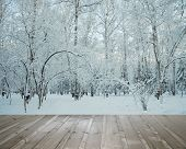 frozen woods under snow and wooden floor
