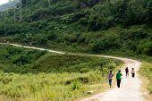 Route In Rural,Vietnam.