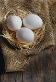 Fresh farm eggs on wooden background
