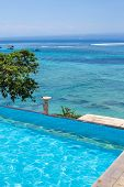 Enjoy The Ocean View Infinity Pool On Vacation