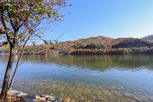 Namiseom Island In Autumn