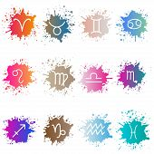 The signs of the zodiac. Set of colorful isons