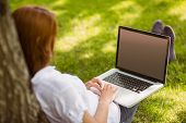 foto of redhead  - Pretty redhead sitting with her laptop in park on a sunny day - JPG