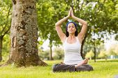 Brunette sitting in lotus pose on grass in the park