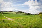 Perfect Sunny Summer Landscape