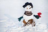 Snowmen with flower
