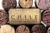Wine bottle corks of Chile 08