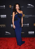 LOS ANGELES - OCT 30:  Sofia Milos arrives to the BAFTA Jaguar Brittannia Awards 2014 on October 30, 2014 in Beverly Hills, CA