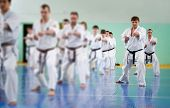 image of karate  - Lesson in karate school for adults and children - JPG