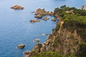 image of promontory  - high rocky promontory overgrown with green trees - JPG