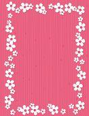 pic of jasmine  - Beautiful jasmin floral frame  - JPG