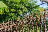 pic of spike  - Arrow sharp spike Fence for protected from Burglar - JPG