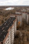 pic of house plants  - View from roof of 16-storied apartment house in Pripyat town Chernobyl Nuclear Power Plant Zone of Alienation Ukraine