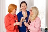 picture of reunited  - Close up Three Reunited Mom Best Friends in Trendy Outfits Enjoying Glasses of White Wine While Talking Funny Things at their Past - JPG