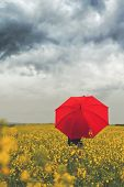 pic of biodiesel  - Person with Red Umbrella Standing in Oilseed Rapeseed Agricultural Field as Crop Protection Agrotech Concept Selective Focus with Shallow Depth of Field - JPG