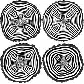 pic of cutting trees  - Set of four vector tree rings background and saw cut tree trunk - JPG