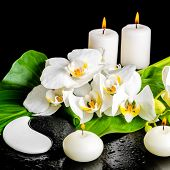picture of yin  - spa concept of orchid flower phalaenopsis leaf with dew candles and Yin-Yang of stone texture on black background closeup ** Note: Shallow depth of field - JPG