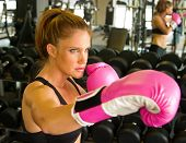Boxing With Pink Gloves 2