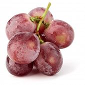Red grape berry bunch isolated on white background cutout poster
