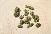 Marijuana Buds. Wooden Tree Stump table. Cannabis Sativa buds. Natural Medical Marijuana. isolated o poster
