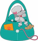 stock photo of poodle  - A dainty grey poodle with pink collar and bows is sitting up pretty in a doggy carry all - JPG