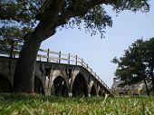 bridge corolla
