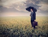 Sad businessman under an umbrella on a wheat field