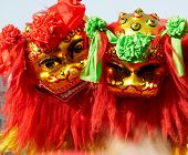 traditional chinese lion dancing in holiday.