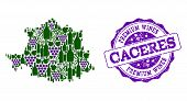 Vector Collage Of Grape Wine Map Of Caceres Province And Purple Grunge Stamp For Premium Wines Award poster