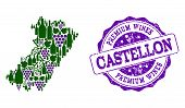 Vector Collage Of Grape Wine Map Of Castellon Province And Purple Grunge Seal Stamp For Premium Wine poster