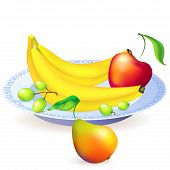Plate of fruits, vector illustration
