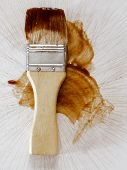 Barbecue Sauce Basting Brush