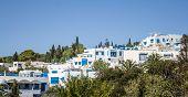 Houses Of Sidi Bou Said
