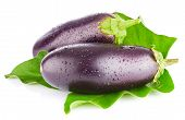 Eggplant With Green Leaf