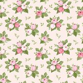 pic of english rose  - Vector seamless pattern with pink rose buds and green leaves on a pink background - JPG