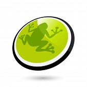 modern frog sign