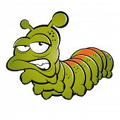 pic of caterpillar cartoon  - funny cartoon caterpillar - JPG