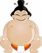 funny cartoon sumo