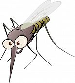 stock photo of gnats  - nasty cartoon mosquito - JPG