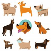 image of cartoon animal  - Vector set of funny cartoon dogs  - JPG