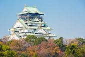 Osaka castle with autumn garden in Kansai Japan