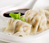 image of soy sauce  - Dumpling - Gyoza with soy